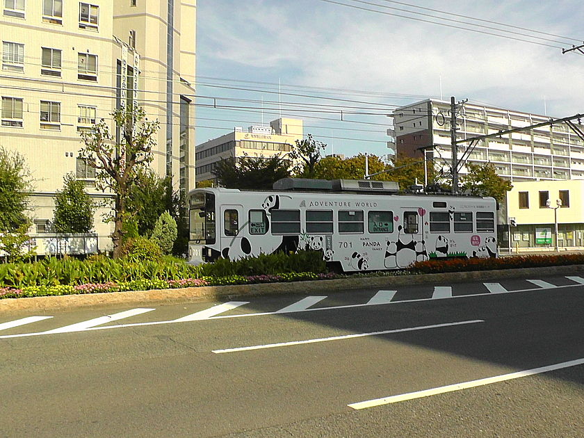 阪堺電車の写真