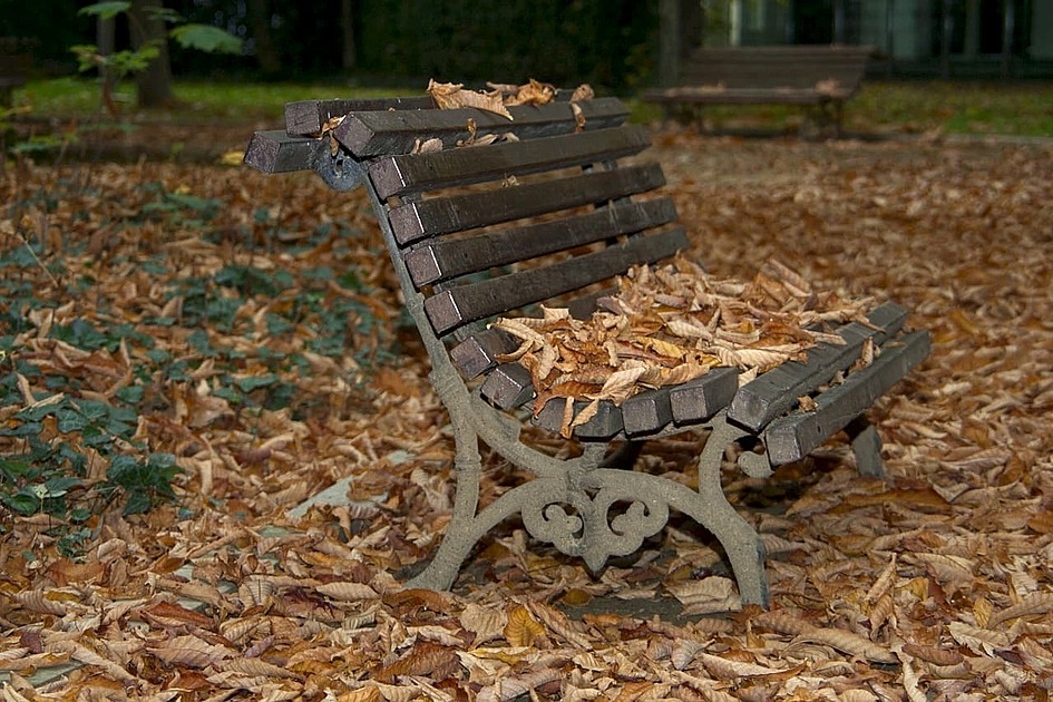 枯葉とベンチの画像