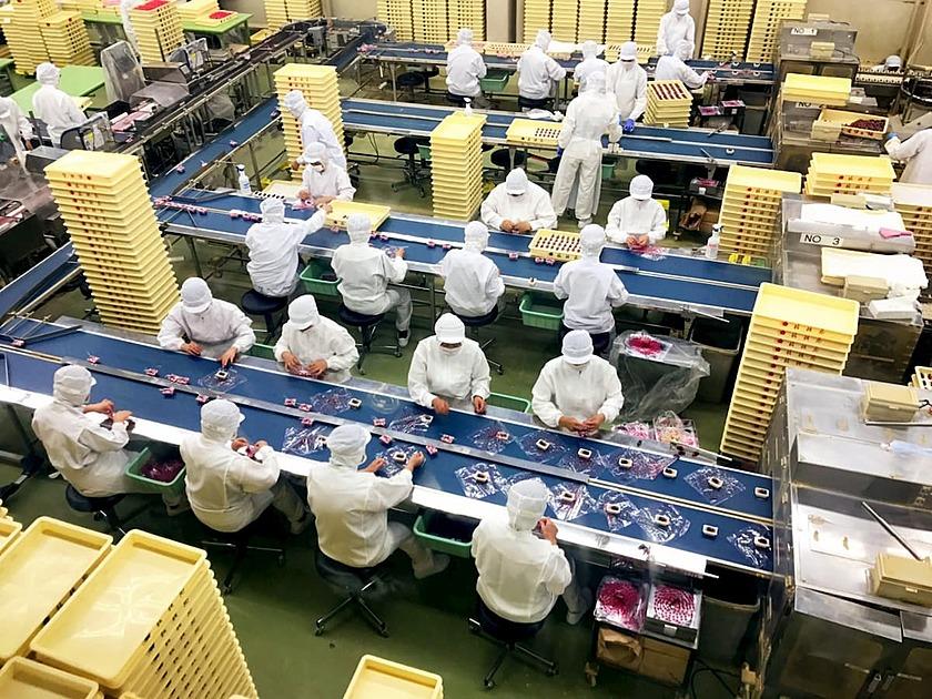 食品工場の画像