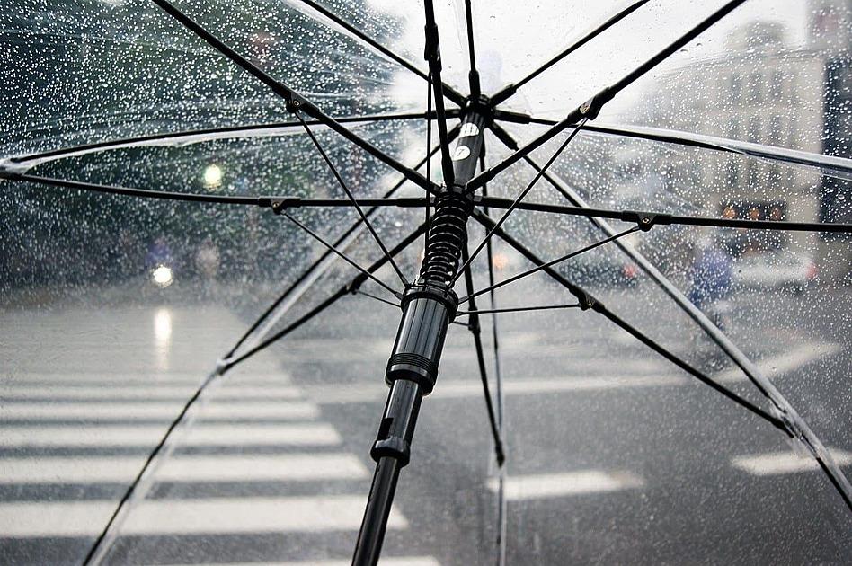 透明な傘の内側から見る写真
