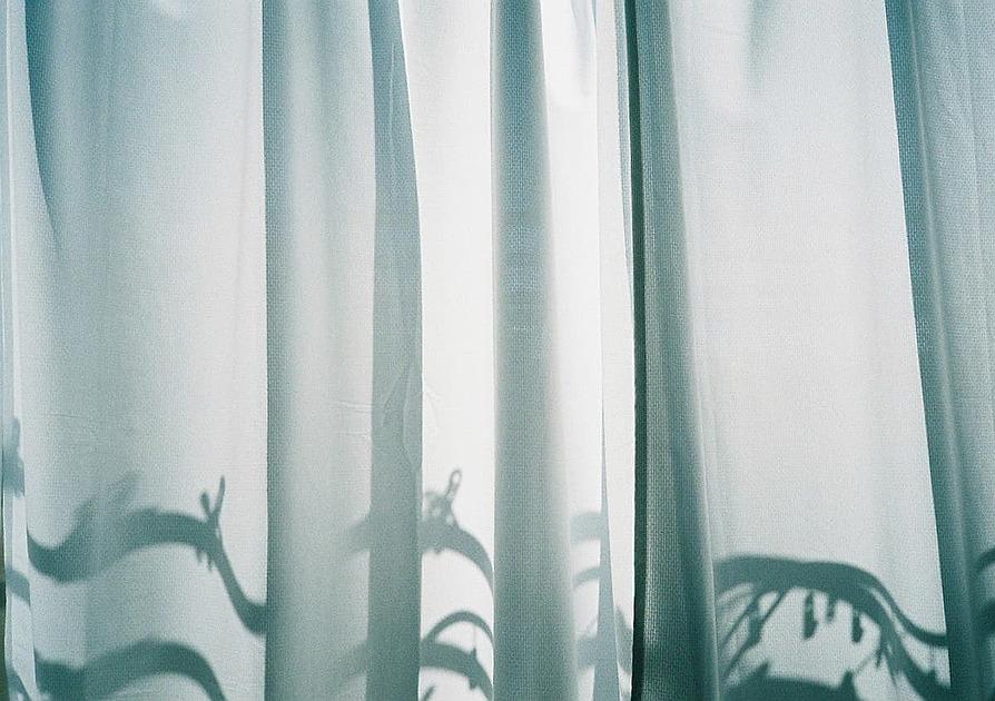 カーテンに影が映っている写真