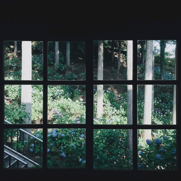 外に木々がある窓