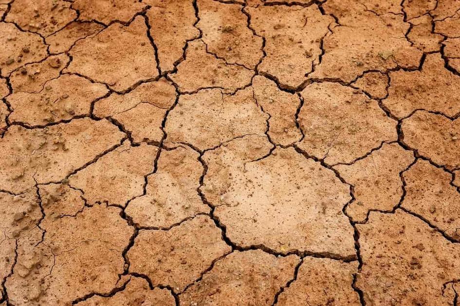 干からびた地面