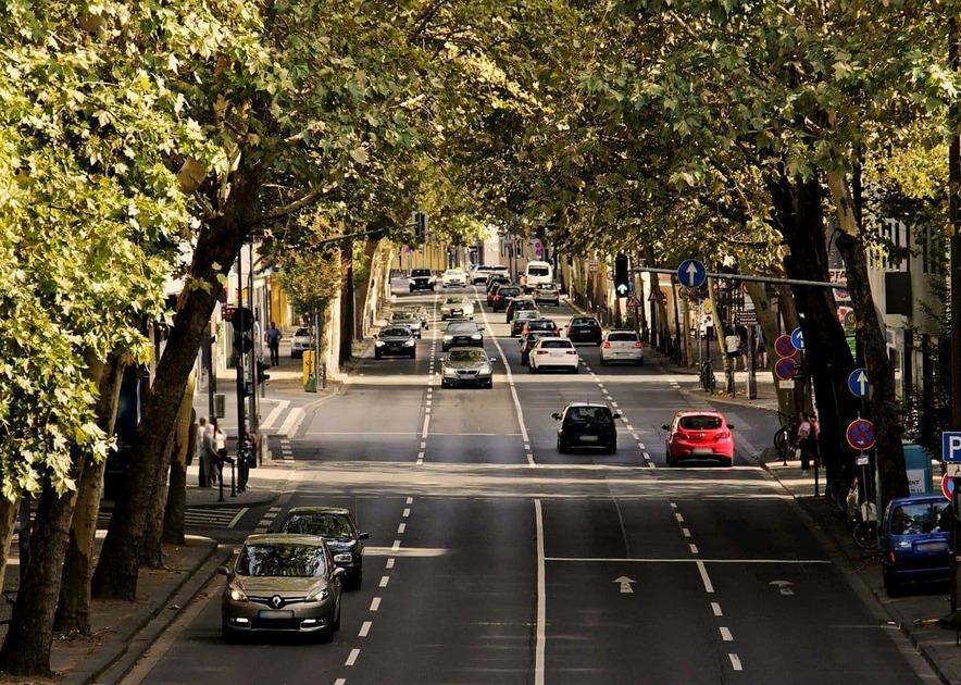 並木道の道路