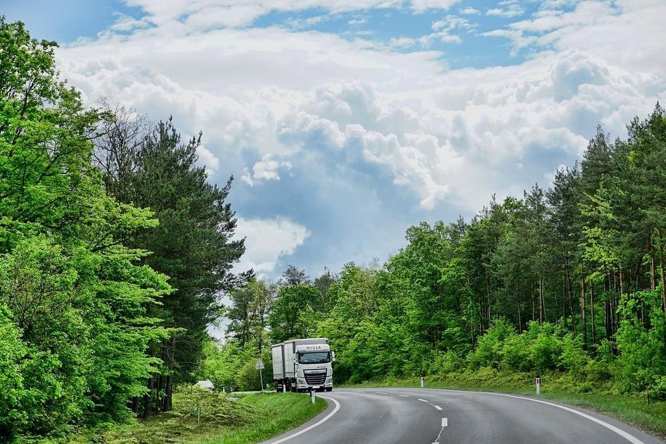 森の中の道路をトラックが走っている